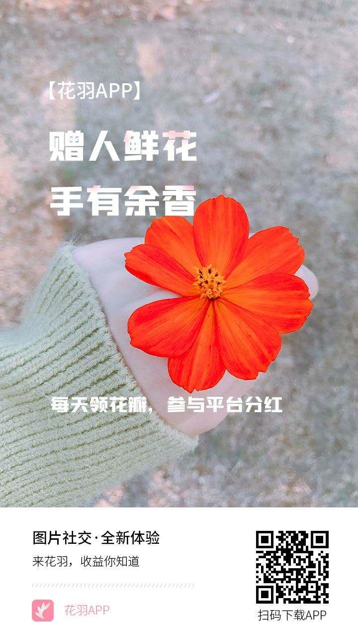 花羽APP -正在空投中,注册并认证,送10鲜花和2花瓣,签到得花瓣,持币分红,邀请收益