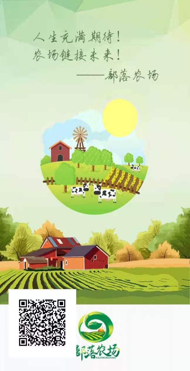 部落农场_种植挖矿模式,锁粉阶段,注册认证,送种子,星级团队化